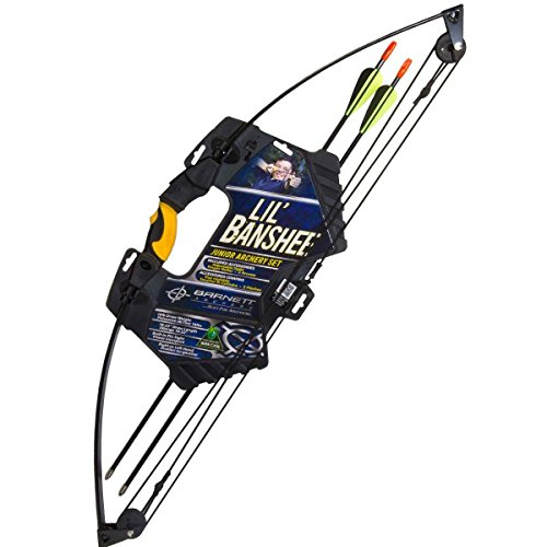 Best Compound Bows reviews