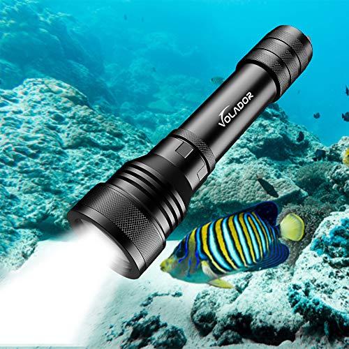 Best led mini flashlights Reviews