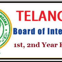 ts-inter-results