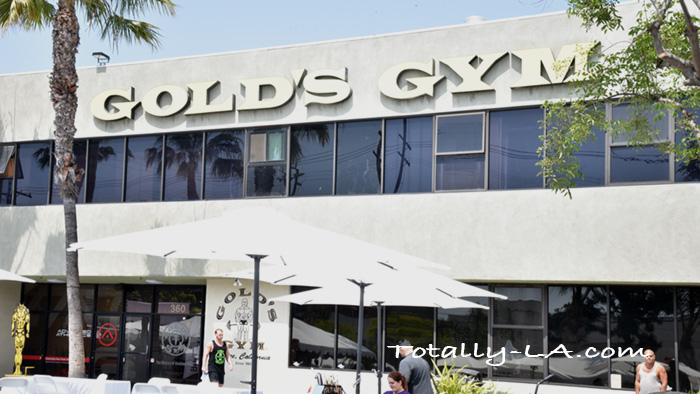 Gold's Gym, fitness