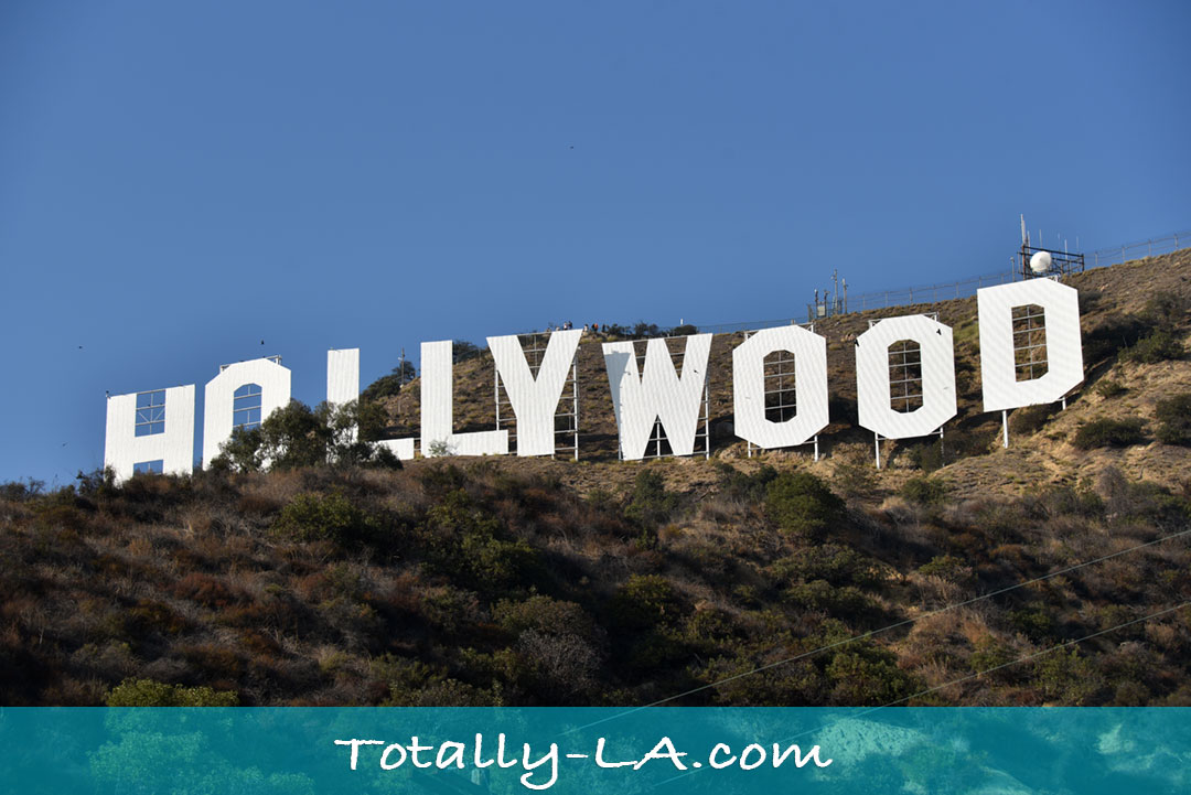 Close view of the hollywood sign