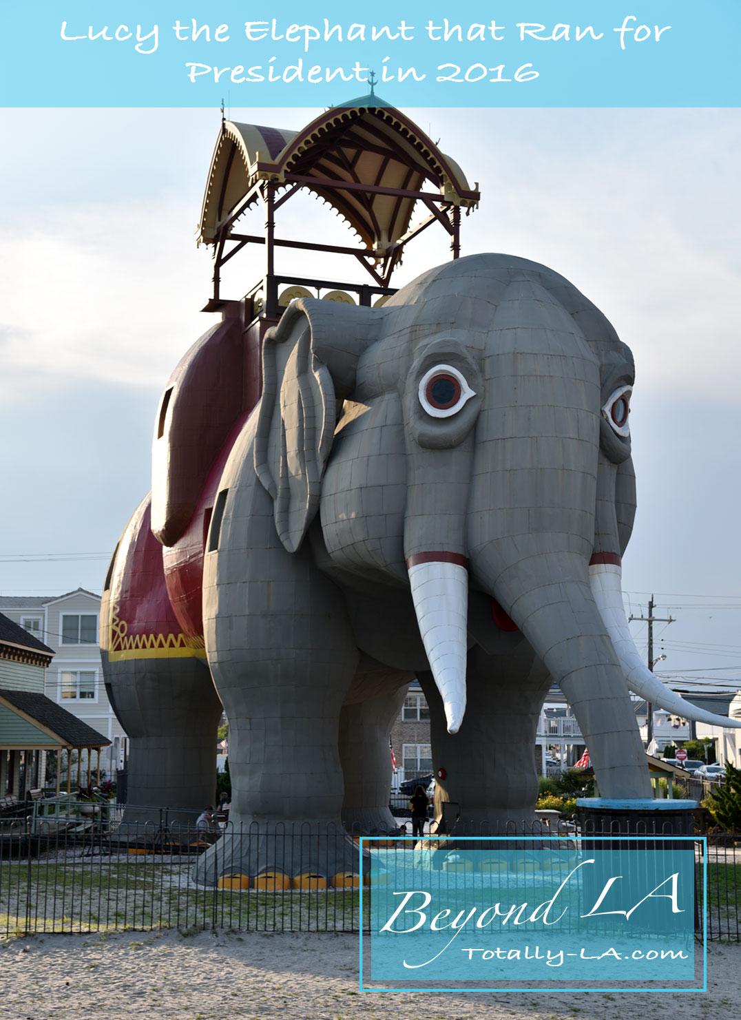 Lucy elephant