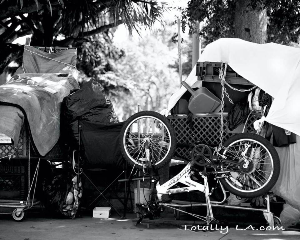 Homeless encampment in Los Angeles