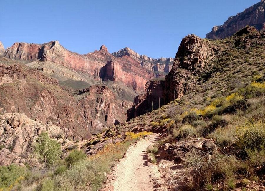 Source Facebook/Grand Canyon National Park