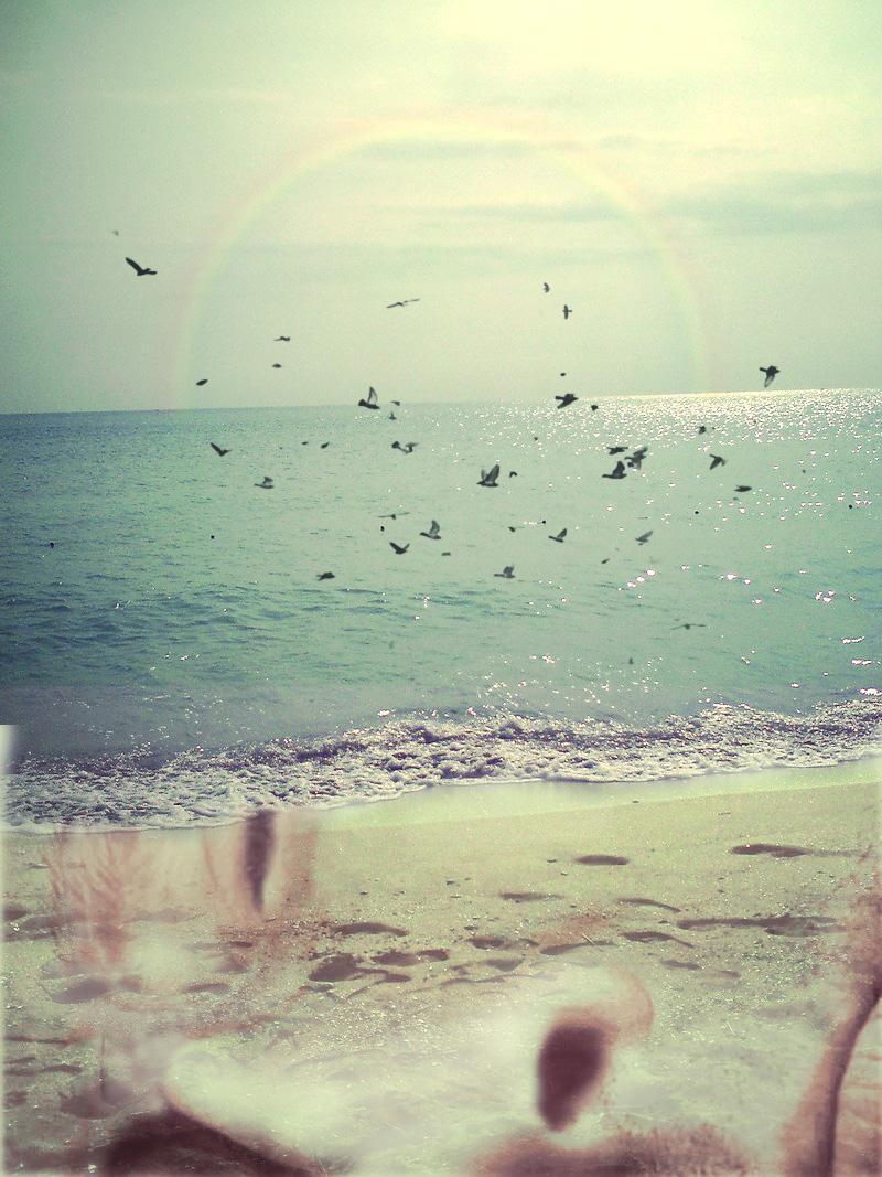 hubby's a beach