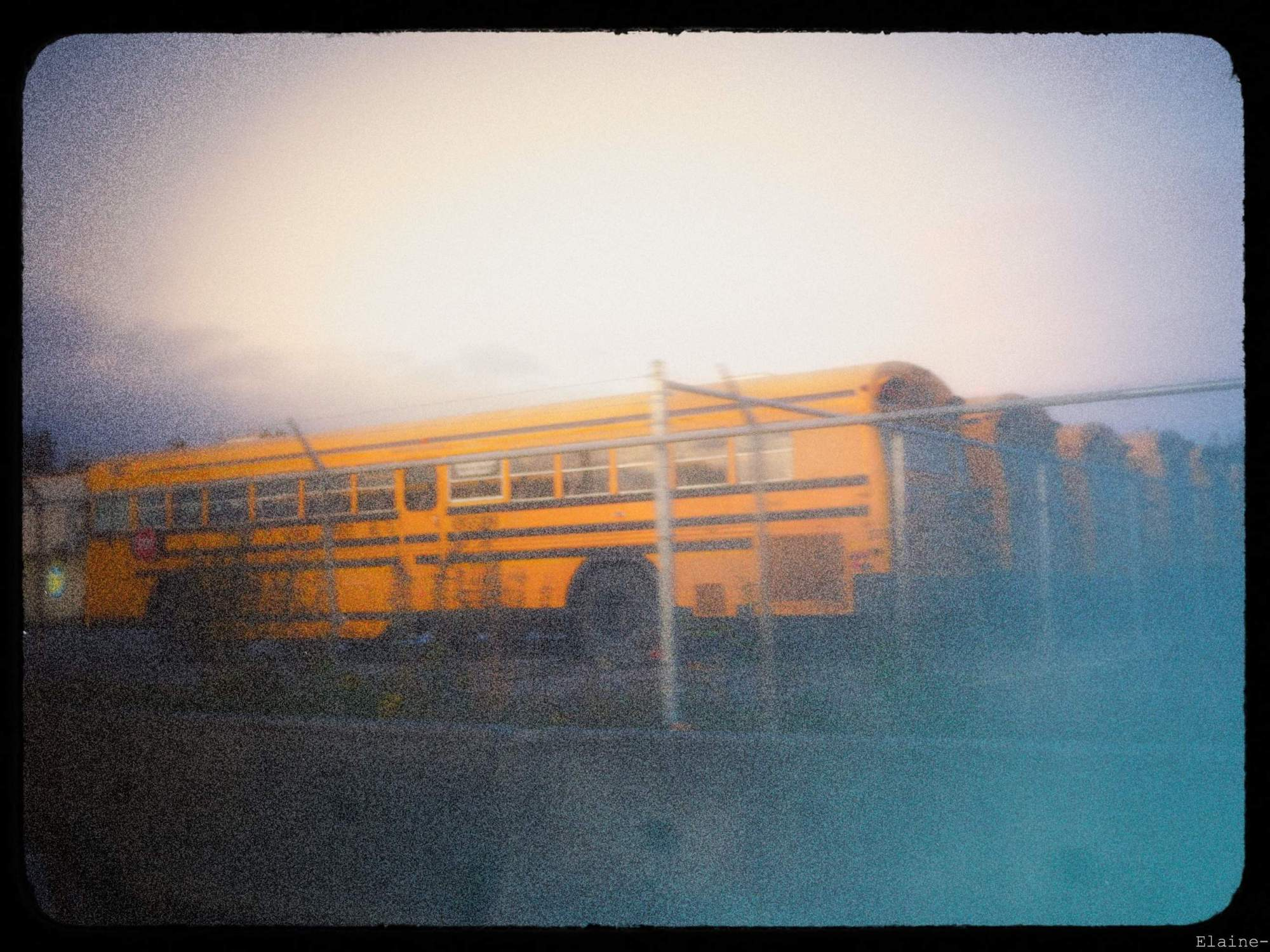 1995buses