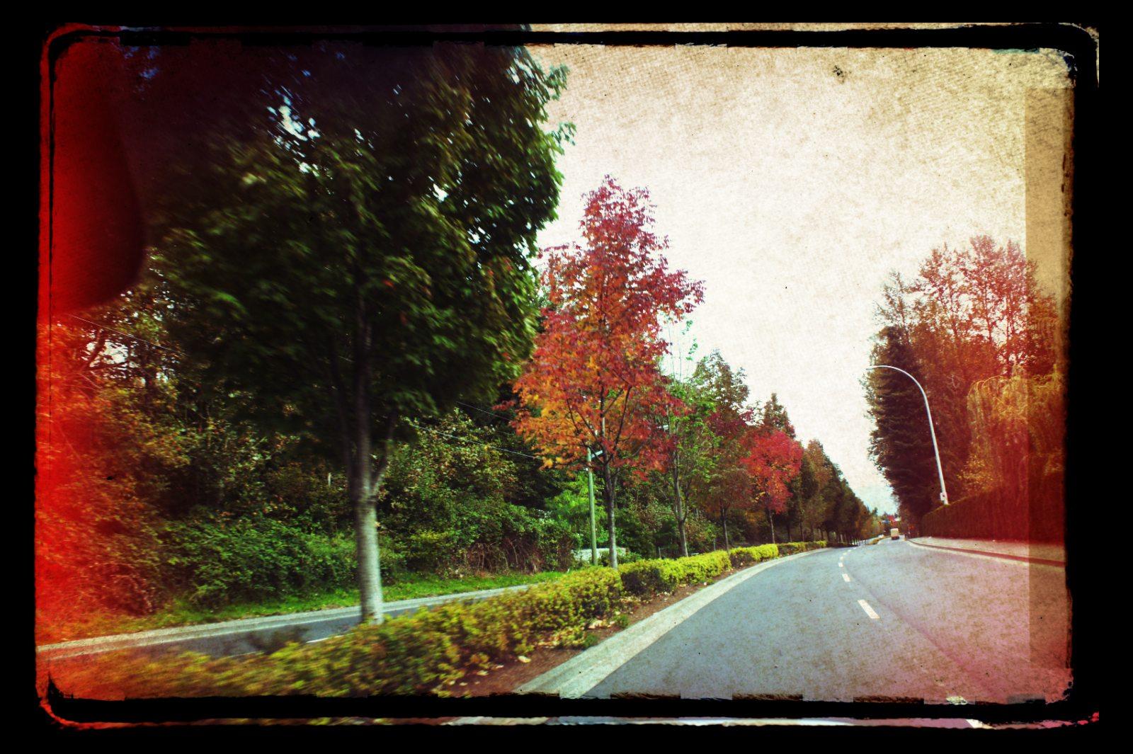 A Fiery Road