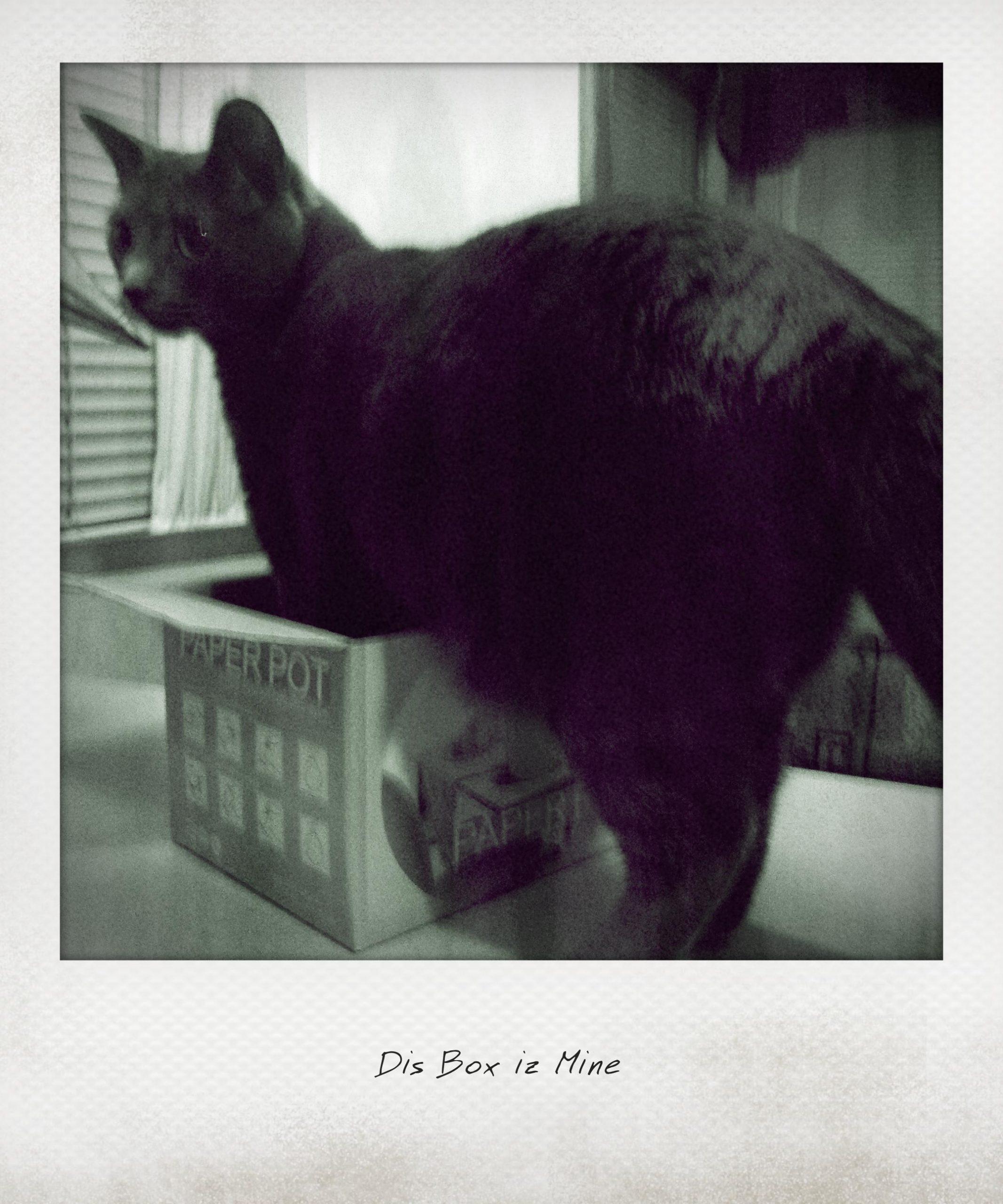 My Box… Mine