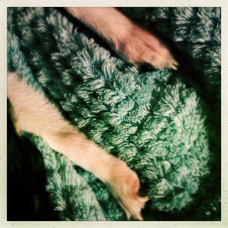 Little Feet Part Five!