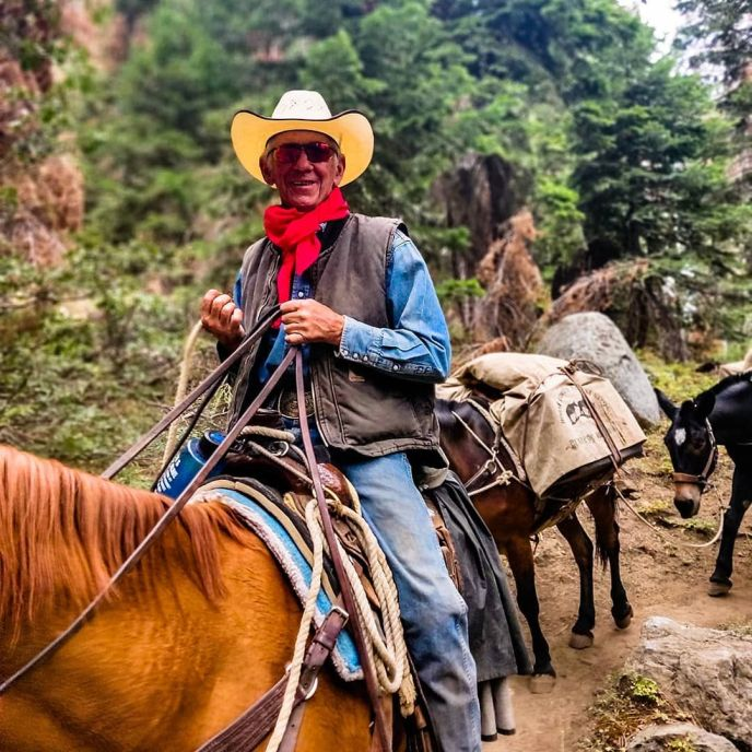 A pack train heading west on the High Sierra Trail. In some places mules are still the most efficient means of travel!