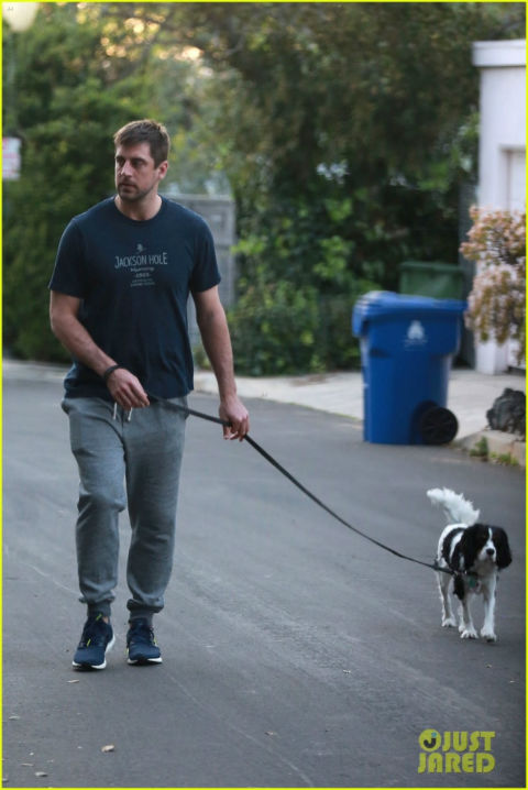 Aaron Rodgers Dog : aaron, rodgers, Aaron, Rodgers, Walking, Total, Packers