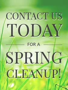 Belfast, Maine Landscaping lawncare