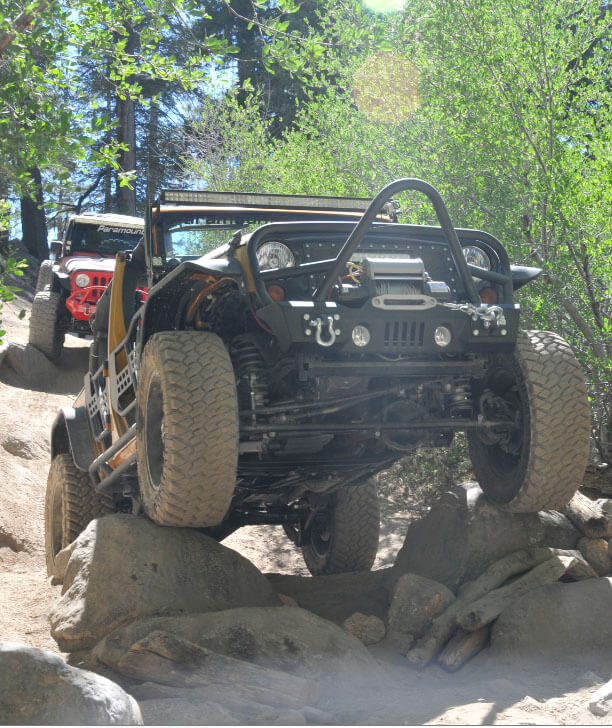 Paramount Automotive Celebrates at Forest Fest