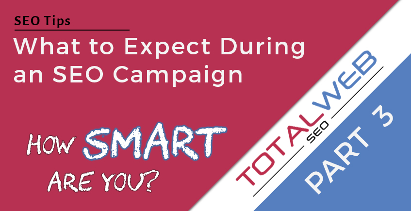 SEO Campaign Expectations