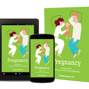 3D Cover image for the Pregnancy FAQ eBook.
