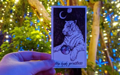 What Is Tarot & How Do I Start Reading My Own Cards?