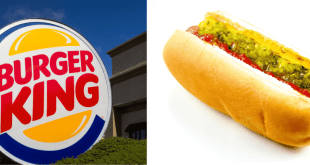 burger king hot dog