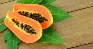 benefits of papaya