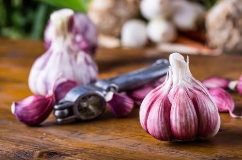 properties of garlic