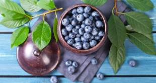 Health Benefits of Blueberries Why this is Must Have