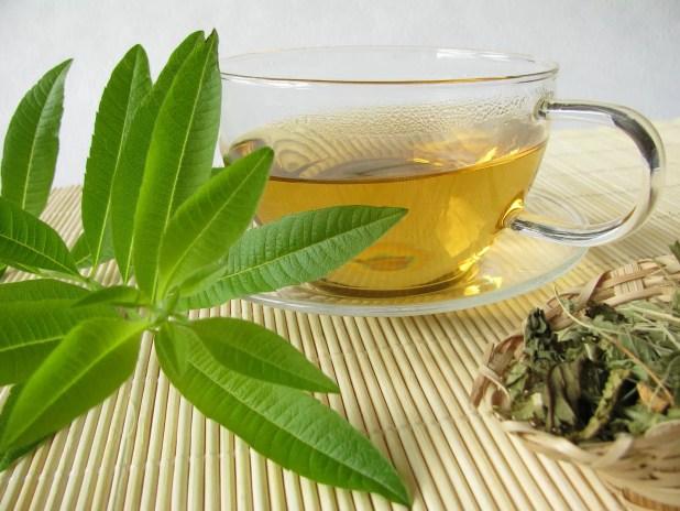 The Benefits of Lemon Verbena Tea 1