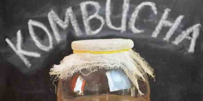 Health Benefits of Kombucha Tea 1