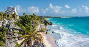 Ruins of Tulum Mexico and a palm tree overlooking