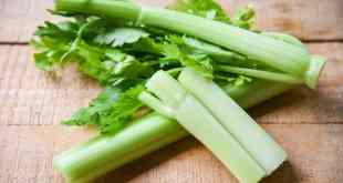 Celery sticks and leaf fresh vegetable