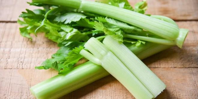 Celery sticks and leaf fresh vegetable
