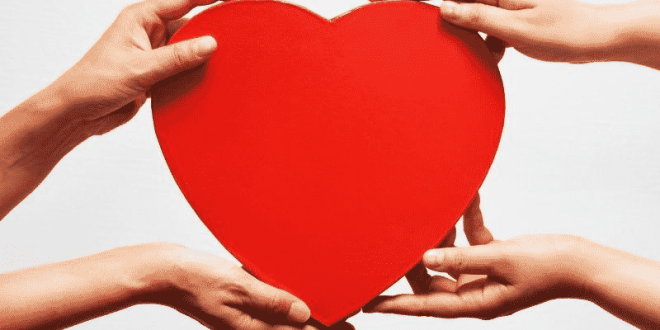 The Best National Charities To Donate To Now