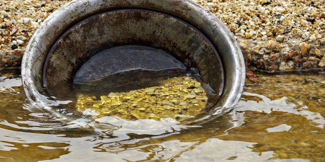 found it golden nuggets gold pan in the water