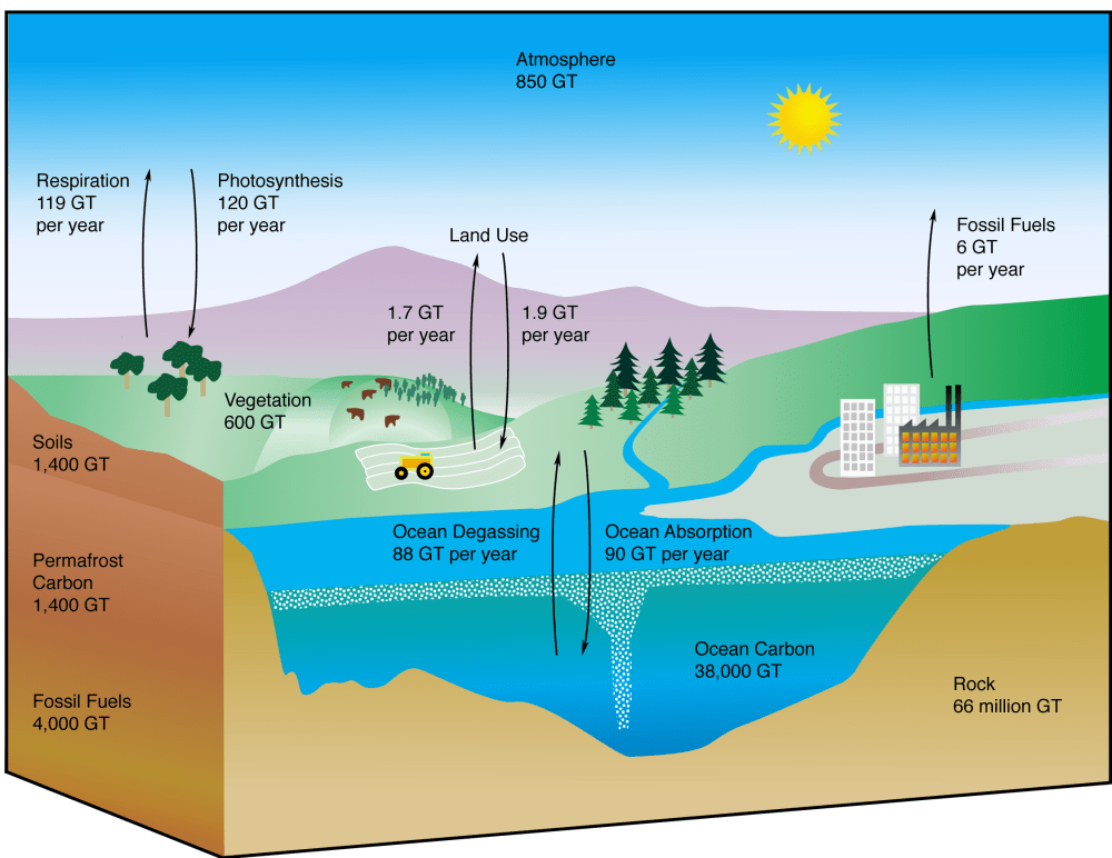 medium resolution of diagram of the global carbon cycle with estimated volumes from nsidc website