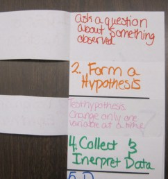 6 Door Foldable- Scientific Method/Inquiry Cycle   To The Square Inch [ 2048 x 3648 Pixel ]