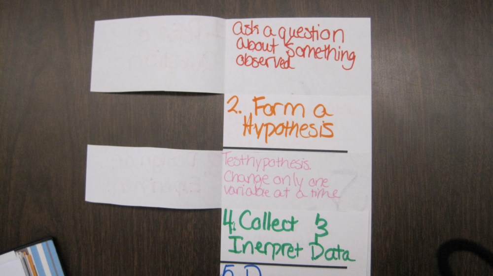 medium resolution of 6 Door Foldable- Scientific Method/Inquiry Cycle   To The Square Inch