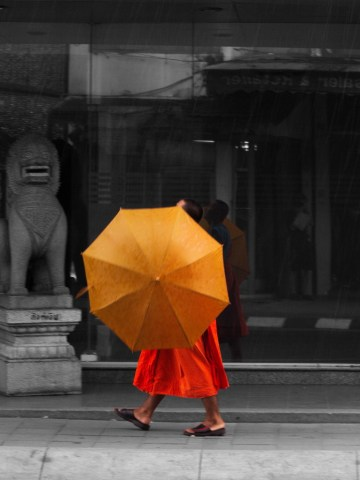 Mönch Regenschirm