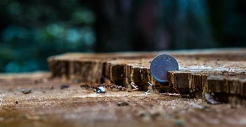 お金のある世界