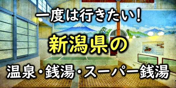 新潟 温泉 スーパー銭湯 おすすめ 穴場