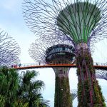 Gardens by the Bay Singapore scaled - Home