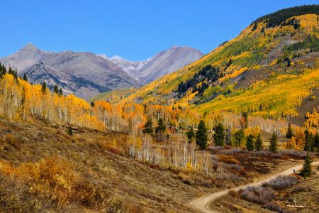 Photo of Lower Loop Trail in the Fall