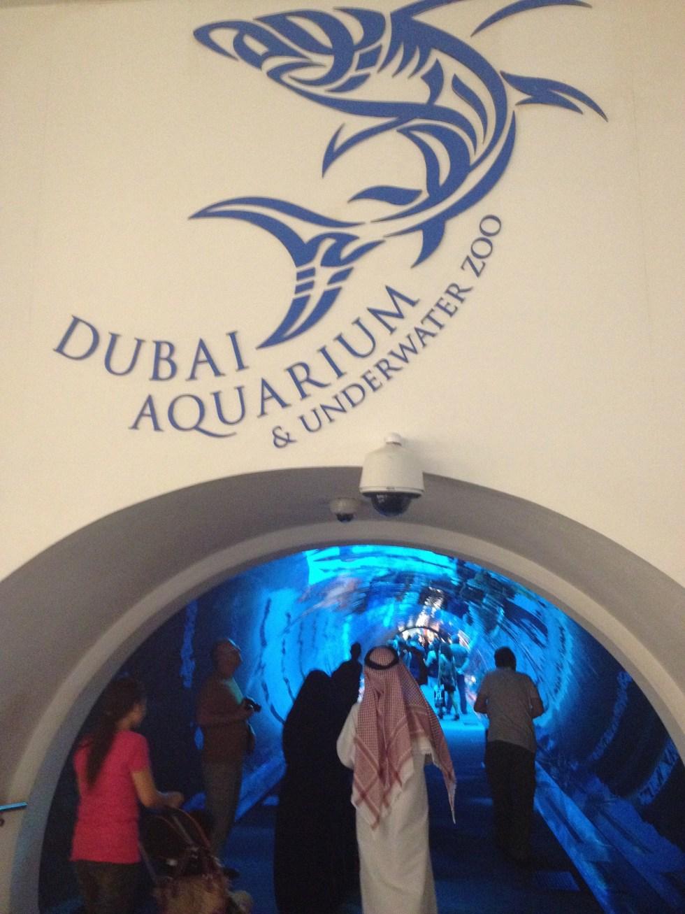 Dubai best aquarium