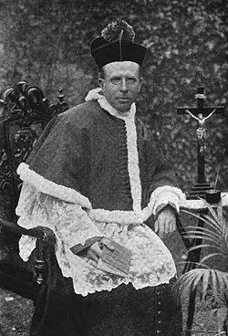 CANON SHEEHAN (1852 – 1913) Catholic Intellectual and Novelist