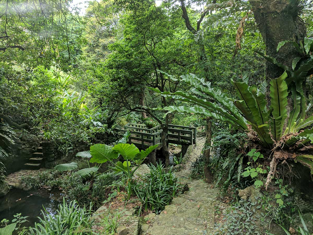 Kadoorie Farm and Botanic Garden | Review from Toucan Takes Off