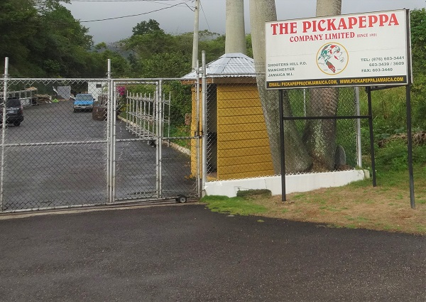 Scharfe Sosse Jamaika Fabrik