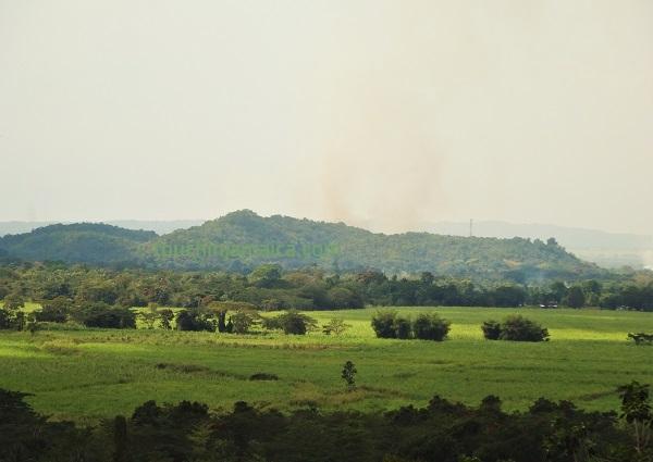 Blick von Withorn über das Grat Plain auf das Cockpit Country Jamaika