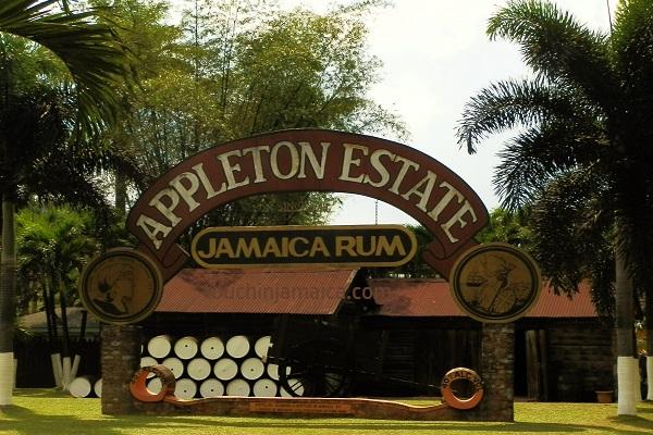 Appleton Estate Jamaica.jpg