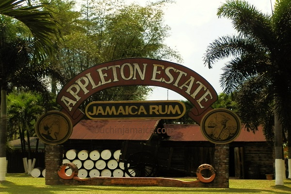 Appleton Estate Jamaica.jpg