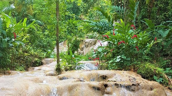 Kleiner, aber nicht so überlaufen wie die Dunn's River Falls sind die Konoko Falls and Park auf Jamaika.