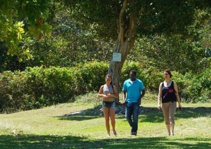Mit Guide unterhaltsamer: Eine Führung im Seville Great House and Heritage Park.