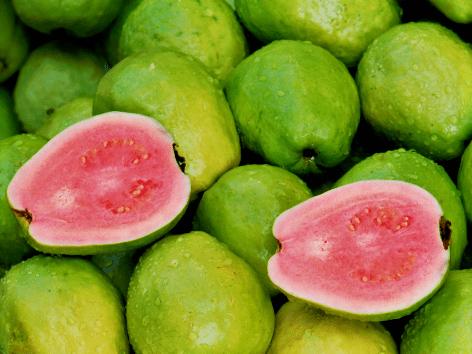 Die Guava mit ihrem pinken Fruchtfleisch ist auf Jamaika ein beliebtes Obst.