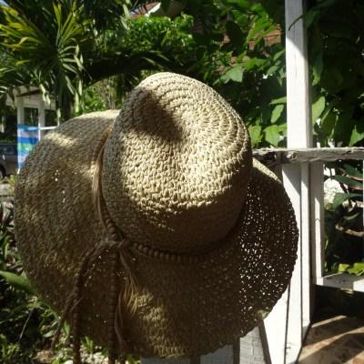 Sonnenhut Touchin'Jamaica